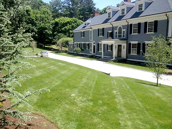 Beautiful lawn in Hamilton, MA after lime soil amendment application